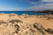 Nature of Cyprus — Stock Photo