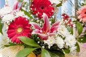 Gerbera flowers and lily — Stock Photo