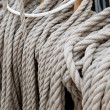 Set of sail boat ropes on horns — Stock Photo #69662515