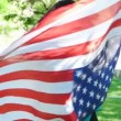 Happy patriotic  young woman with the American flag held in her hands dancing slowmo — Stock Video #73604759