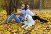 Young couple with a dog in the autumn forest — Stock fotografie