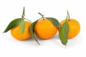 Frash tangerines on stem with green leaves  — Stock Photo