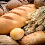 Wheat — Stock Photo #55488213