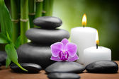 Spa still life zen basalt stones and orchid — Stockfoto