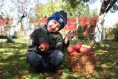 苹果的小男孩 — 图库照片