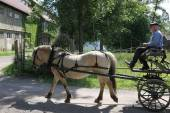 Horseman and carriage in Norwegian Museum — Stockfoto
