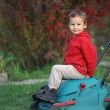 Little boy playing at a lawn mower — Stock Photo #59085921