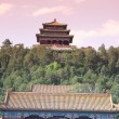 Forbidden City in Beijing — Stockfoto #60131901