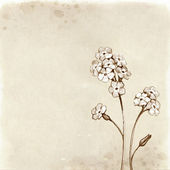 Forget me not flowers drawing. — Stock Photo
