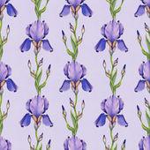 Akwarela irys kwiaty wzór — Zdjęcie stockowe