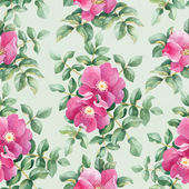 Pattern with dog rose — Stock Photo