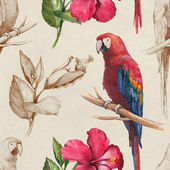Macaw and hibiscus flower  pattern — Stock Photo