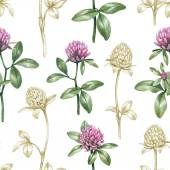 Watercolor clover flowers  pattern — Stock Photo