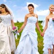 Group bride  summer outdoor. — Stock Photo #52886861