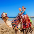 Tourists riding camel on beach of  Egypt. — Stock Photo #71724575
