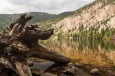 Cottonwood lake near Buena Vista Colorado — Stock Photo
