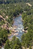 Arkansas River in Colorado — Stock Photo