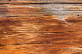 Background close up of cedar trunk wood — Stock Photo