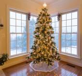 Beautiful xmas tree with snow outside — Stock Photo