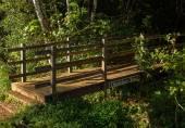 Entrance to Okolehao Trail Kauai — Stock Photo