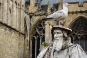 Seagull perched on top of carved statue of scholar — Stock Photo