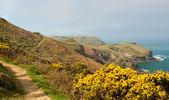 South West coast path near Tintagel Cornwall — Stock Photo