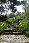 Steep cobbled pathway up hillside — Stock Photo
