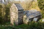 Minster church in Valency woods near Boscastle — Stock Photo