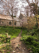 Minster church in Valency woods near Boscastle — Stock Photo