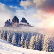 Amazing winter in the mountains — Stock Photo #68199901