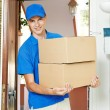 Delivery man with parcel box indoors — Stock Photo #51875525