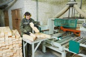 Wood processing manufacture — Stock Photo