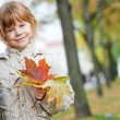 Happy little girl in autumn — Stock Photo #52834353