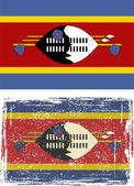 Swaziland grunge flag. Vector illustration. — Stock Vector