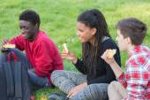Teen Friends Having a Break at Park — Stock fotografie
