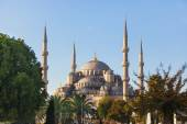 Blue Mosque in Istanbul on a sunny day — Stock Photo