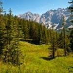 Bavarian Alps — Stock Photo #58848515
