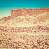 Stone Desert — Stock Photo