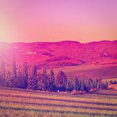 Hill of Tuscany — Stock Photo