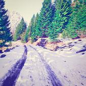 融雪 — ストック写真