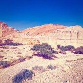 Desert in Israel — Stock Photo