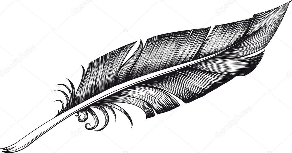 羽毛笔 — 图库矢量图像08