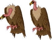 Vulture — Stock Vector