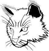 Kat gezicht — Stockvector