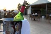 Bottle of red wine in a bucket — Stock Photo