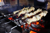 Pieces of meat on a skewers — Stock Photo