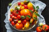 Barevné rajčata — Stock fotografie