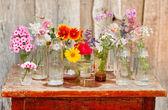 Flores bonitas — Fotografia Stock