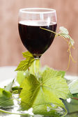 Red wine in glass — Stock Photo