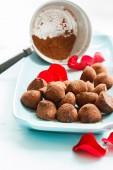 čokoládové lanýže — Stock fotografie